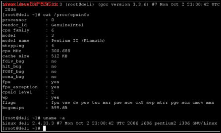 Obrázek: DeLi Linux na starším stroji